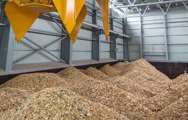 dupont biomasse